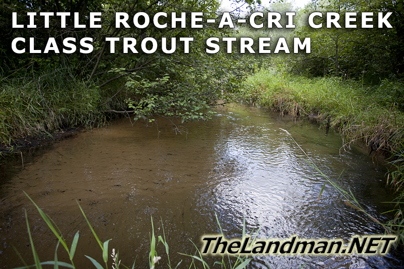 Little Roche-A-Cri Creek Trout Stream