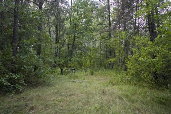 land for sale in Wildwood acres, Adams County WI.