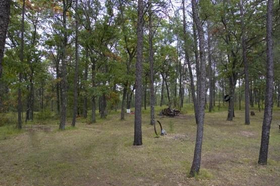 A-frame for sale near Lake Petenwell in  big Flats Township Wisconsin
