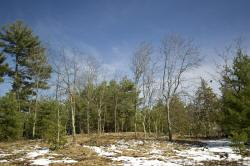 Land for Sale in Wisconsin Dells area