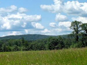 farm land for sale wi