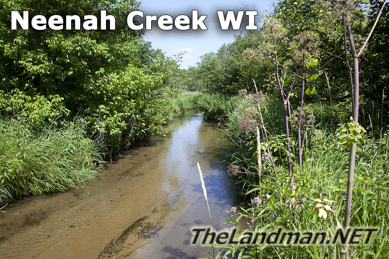 Neenah Creek WI Trout Stream