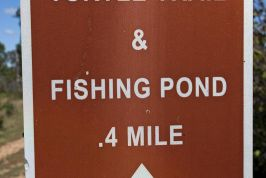 Kids Fishing Pond and Turtle Trail Photos