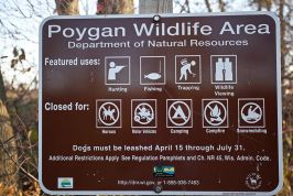 Poygan Wildlife Marsh Area Photos