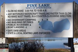 Pine Lake Springwater Township Photos