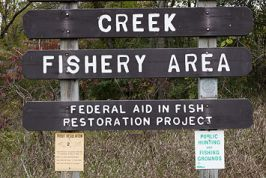 Willow Creek Fishery Area Spring Creek East Parking Photos