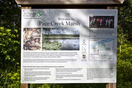 Page Creek Marsh State Natural Area Images