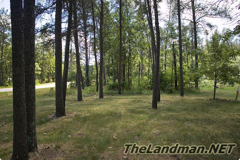 Pineorama is located in Quincy Township, Adams County, WI.