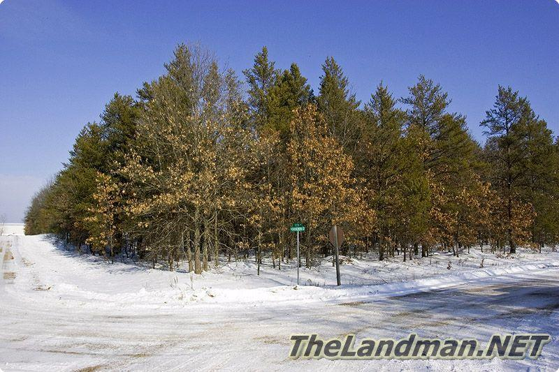 Pine Oaks Subdivision is located in Adams Township, Adams County, WI.