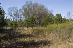 1592001, 1592001 - 8 Private Wooded Acres Near Public Land, WI!