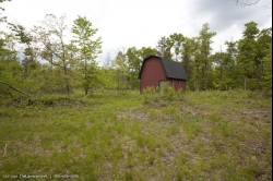 1804724, SOLD! - 1804724 - Hunting 40 wooded acres near Lake Petenwell