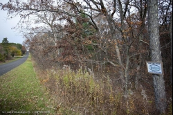 1815723, Wisconsin Land for Sale - Camp or Build - Priced to SELL!