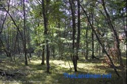 Sold! 1819334, Wisconsin Dells Camping or Building site