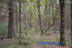1819335, 1819335 - Pretty Wooded camp or home site near the Dells