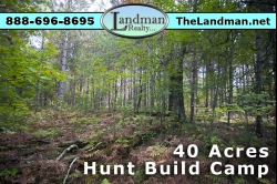 SOLD! - 1841516, SOLD! - Wisconsin Hunting Acreage for Sale
