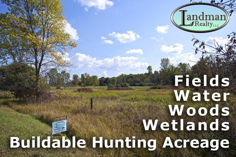 D_800X533-MLS-Buildable-Hunting-Acreage_MG_9387