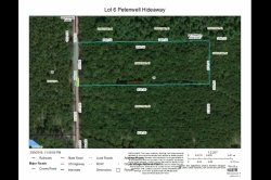 1853035, Over 5 wooded acres near Lake Petenwell