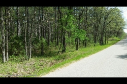 1857807, 5+ Acres - Land for Sale by Big Roche-A-Cri Lake