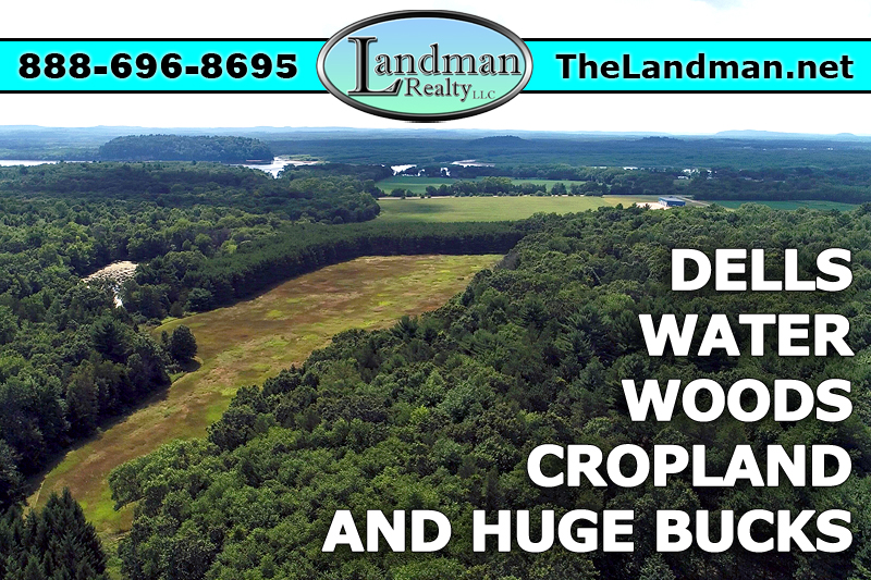 Wisconsin Dells Buildable Hunting Acreage for Sale