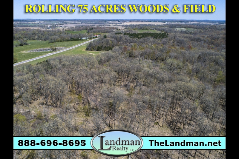 Wisconsin Hunting Land for Sale 75 Acres