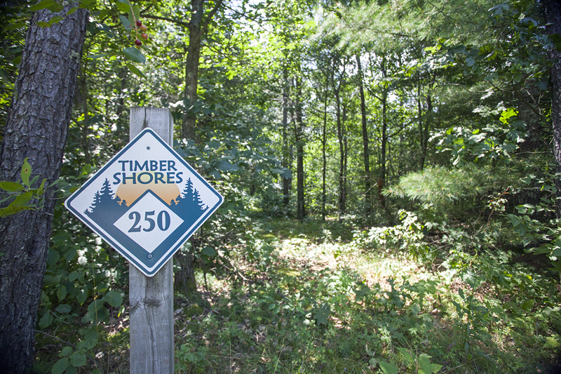 2 Timber Shores Lots