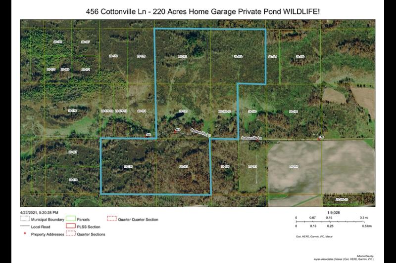 D-800X533-Deer-On-Trail-Day-4-19-2021-DSCF0045