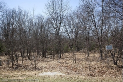 1743327 , 1743327 - Wooded building site with access to small lake