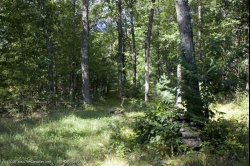 1762258, SOLD! - 1762258-Camp or build close to State Park!