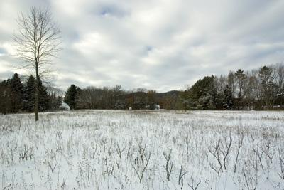 2 Wooded Lots Within Walking Distance Of Friendship Lake
