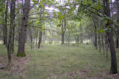 Invest In Central Wisconsin Land Today