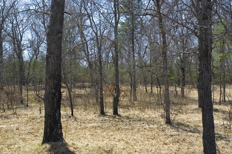 1 Acre Of Gorgeous Wooded land for sale with home