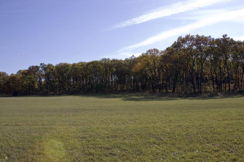 nicely wooded vacant land for sale
