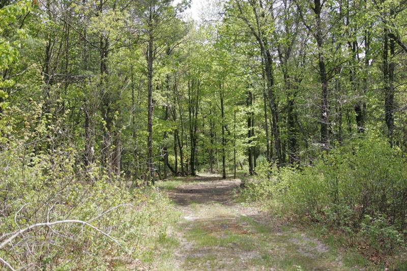 Property Is Abundant In Nature & Hiking Trails!