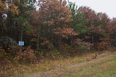 2 Wooded Acres with Lake Access to Lake Petenwell!