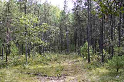 5+ Acres of Wooded Vacant Land For Sale in Central Wisconsin!