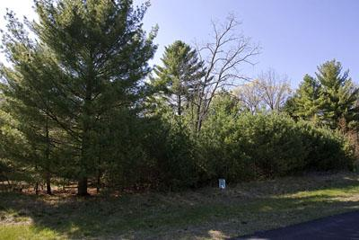 Unique Land For Sale With Lake Petenwell Deeded Access!