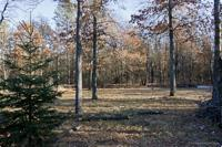 2 Vacant Wooded Lots With Access to Lake Camelot!