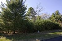 Affordable Vacant Land With Lake Petenwell Deeded Access!