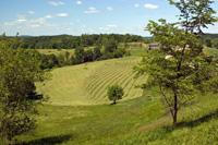 Buildable Land With Greenspace Included