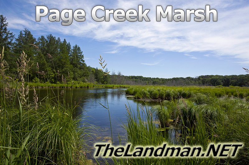 Page Creek Marsh State Natural Area