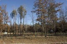 Beautiful Vacant Lot With Deeded Access to Lake Camelot!